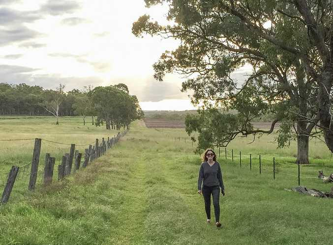 Brisbane office worker Charlotte Brierley and her husband will soon be part of the truffle gold rush, once their 1500 oak trees mature.