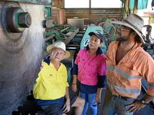 Fraser Coast sawmill reopens creating dozens of new jobs
