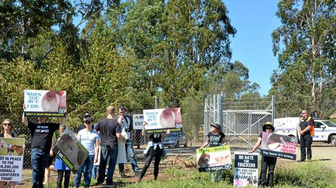 Animal rights activists descended on Swickers in Kingaroy on Wednesday to protest against the slaughter of animals.