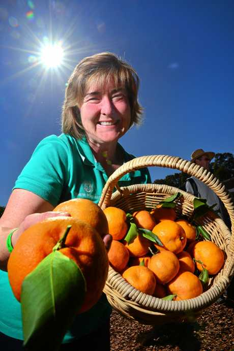 BOUNTIFUL: Helen Andrew shares her extra harvest.