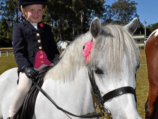 HIGH HORSE: Abby, 4, with Fairy, are saddling up for this year's Noosa Country Show on September 15 and 16.