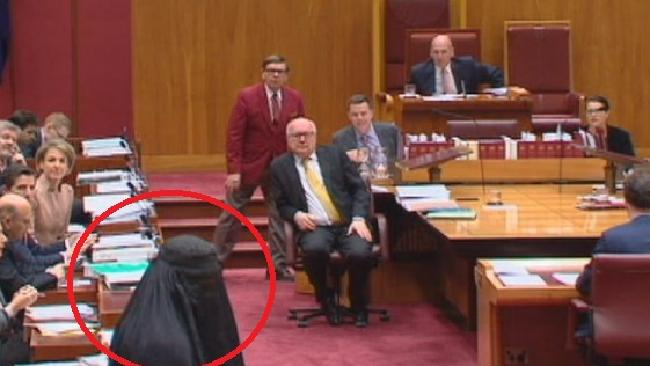 Pauline Hanson wearing a burqa while a bemused George Brandis looks on