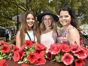 10 date ideas for Toowoomba Carnival of Flowers