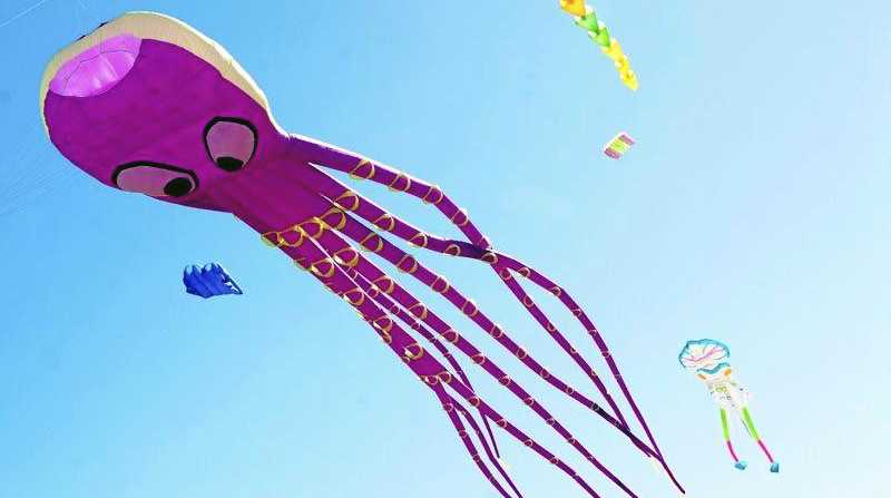 FLYING HIGH: Keep an eye out for the giant flying octopus at the Moore Park Beach Festival. The 10m x 30m kite is from the Redcliffe Kite Club.