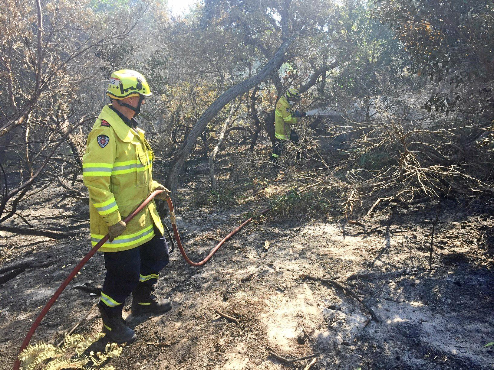 FIRE READY: Fire-fighters from NSW Fire & Rescue were again at the Ballina incident near Anderson Rd, after westerly winds pushed the fire into some unburnt areas within the fire perimeter which still remains secure.