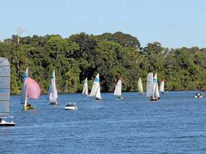SPINNAKERS UP: A fleet passes by Stotts Island in a previous Tumbulgum Passage Race event.