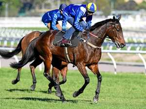 Champion mare Winx (right) competes in a barrier trial at Randwick in Sydney.