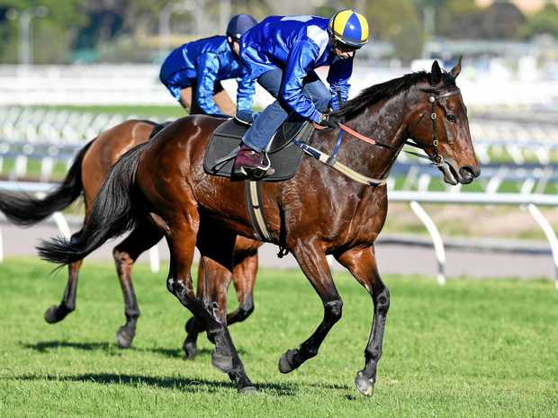 Brilliant Winx makes it 18 in a row at Randwick