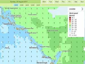 55kmh winds buffet Bundy
