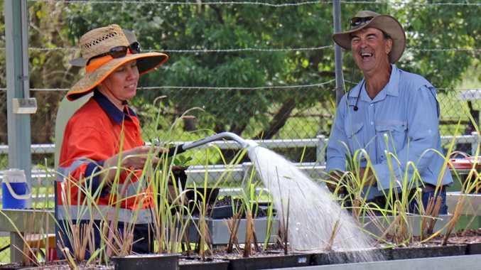 Mackay Natural Environment Centre nursery hand Erin Standen and volunteer Ken Greeves.