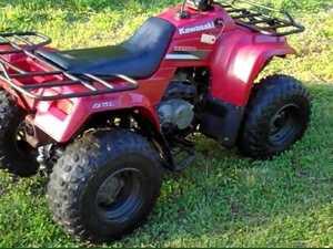 Thieves steal paraplegic's quad bike and his freedom