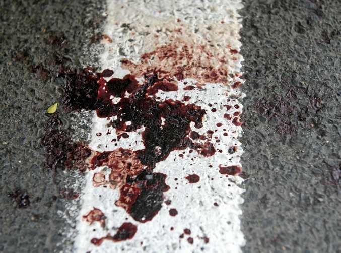 PLEA: Violent assaults have sky-rocketed across the Sunshine Coast.
