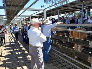 OPINION: Saleyard fees important for cattle exchange