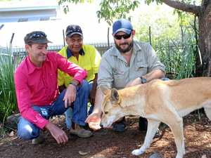 TECKnology to help with animal problems in Bundy