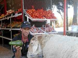 It's baaaaack, famous Bundy produce stall reopens