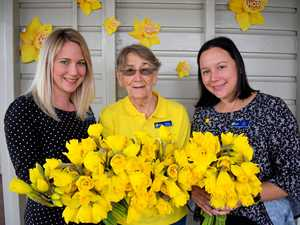 33,000 fresh flowers hit Rockhampton for fundraiser
