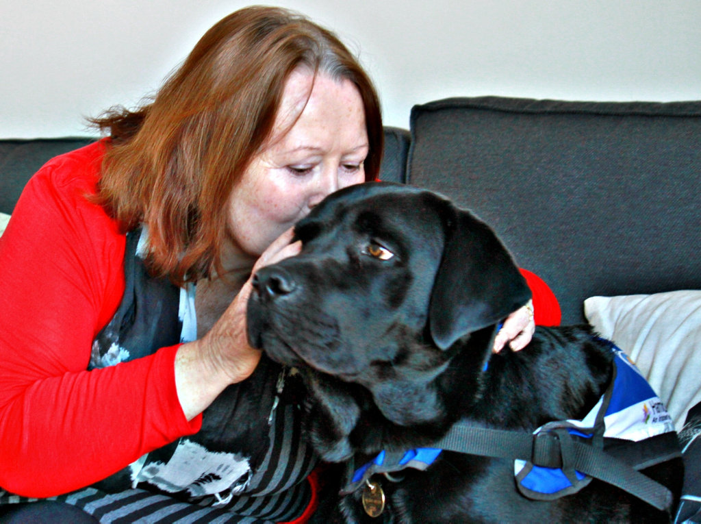 Labrador Zorro is one of 10 dementia dogs in Australia. The pooch supports 59-year-old Loretta Baxter who has the disease.