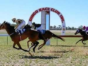 Bells taking stable star to Dingo Races