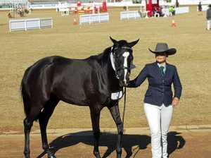 Equestrian Show to triumph despite Debbie setbacks