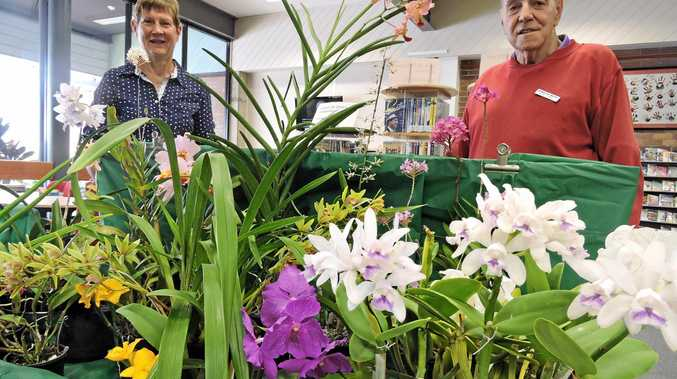Maryborough District Orchid Society members Sue Muller and John Terrill can offer advice and information today and tomorrow at the display held at the Maryborough Library.
