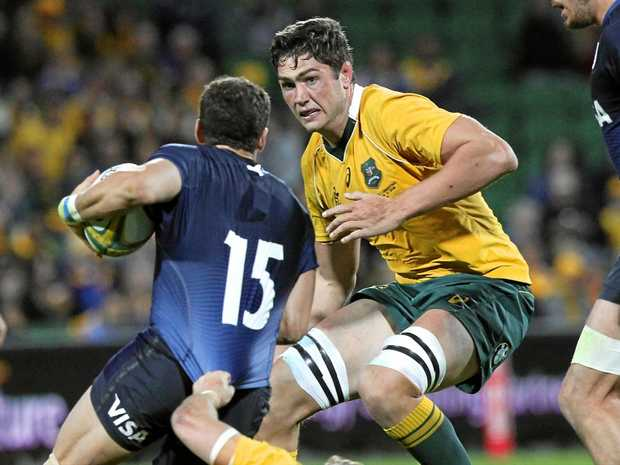 Rob Simmons playing for the Wallabies against Argentina in last year's Rugby Championship.