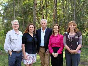 New 100ha koala reserve for Tweed Coast