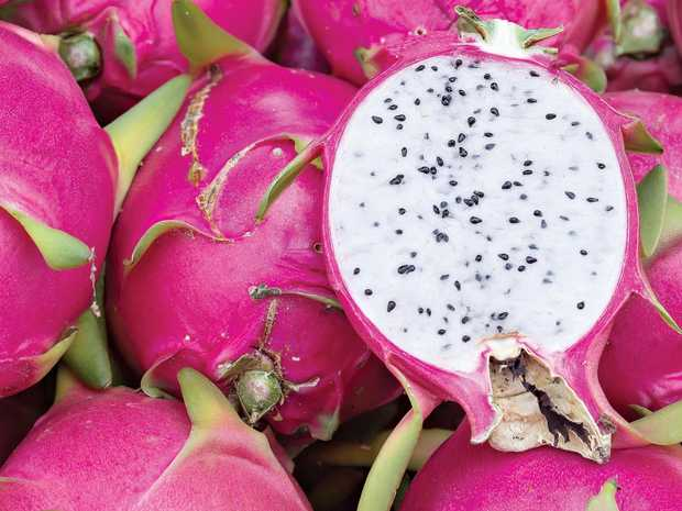 Group detail of fresh dragon fruit, Dragon fruit or Pitaya is the plant in Cactaceae family or Cactus