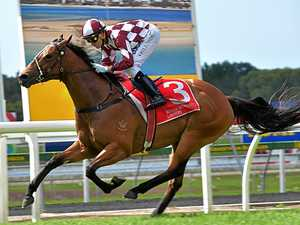 Mare returns to racing scene with promise