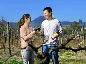 Husband and wife team have big plans for Ipswich winery