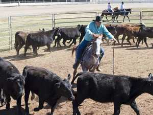 Poker Rodeo Ranch Sorting