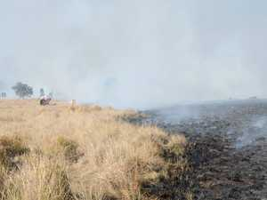 350 hectares of land burnt in bushfire