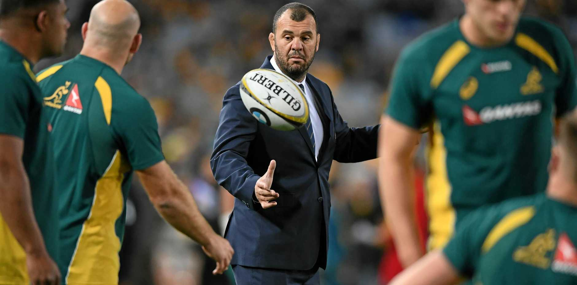 Australia head coach Michael Cheika watches his players warm up before game one of the Bledisloe Cup.
