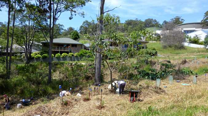 ON THE SCENE: Come to Sawtell and see the work carried out by the team of volunteers