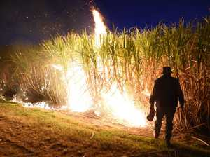 Spectacular cane fire - but it might be one of the last