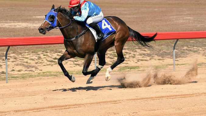 SPRINT: Gemma Steele rides the Darryl Gardiner-trained Humanise to a win in race two.