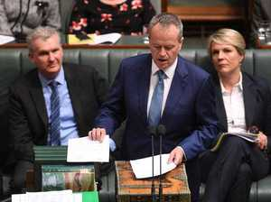 Shorten tables his citizenship documents