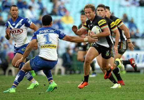 Matthew Moylan in action for the Panthers