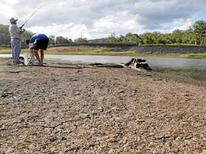 Coast faces drought readiness measures as supply falls