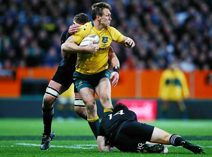 Dane Haylett-Petty of the Wallabies is wrapped up by the All Blacks defence in Dunedin last month.