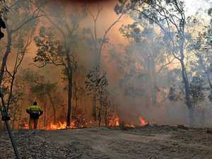 'Cash-strapped' National Parks leaves fire risk near Gympie