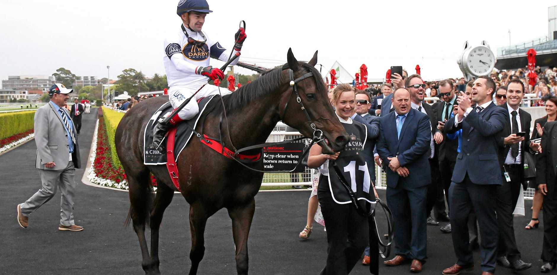 STATE'S BEST: Yankee Rose, returns to scale after winning the Moet Spring Champion Stakes race with jockey Dean Yendall.