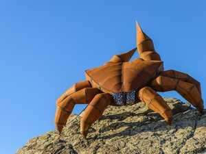 """The Crab"" scores city woman major art prize"