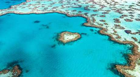 Aerial view of Hardy Reef, home to the Heart Reef, in the Great Barrier Reef..