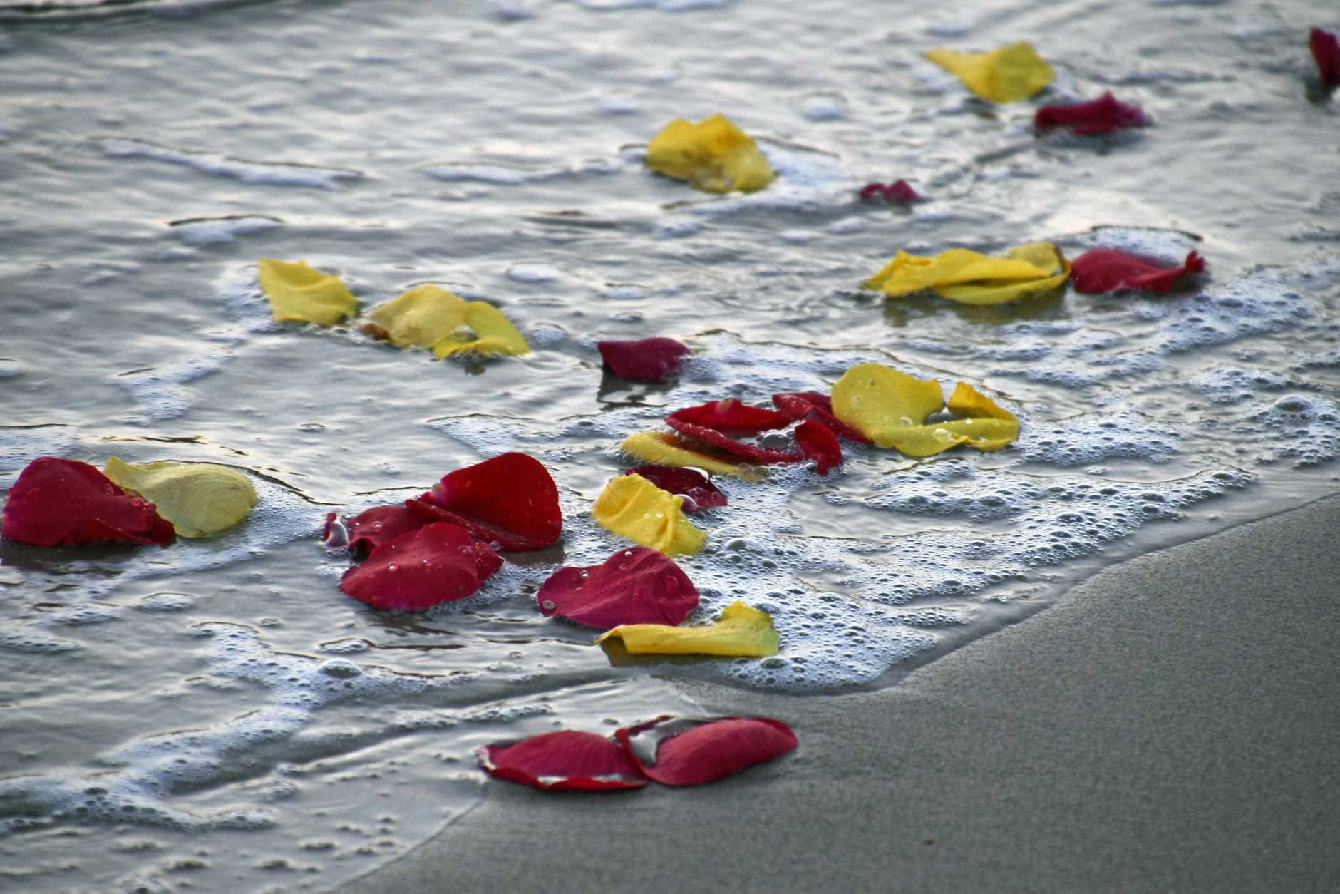 Rose petals for remembrance.