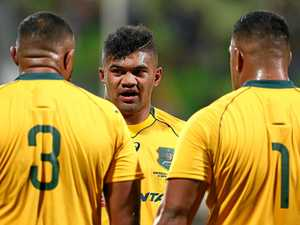 'Fresh meat' Uelese a rising star for Wallabies