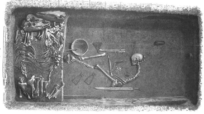 Illustration by Evald Hansen based on the original plan of grave Bj 581 by excavator Hjalmar Stolpe; published in 1889. This excavation was used as the template for what to expect from Viking warrior males. Source: Charlotte Hedengstierna-Jonson et al / Physical AnthropologySource:Supplied
