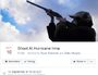 "500k join campaign to ""shoot down"" Hurricane Irma"