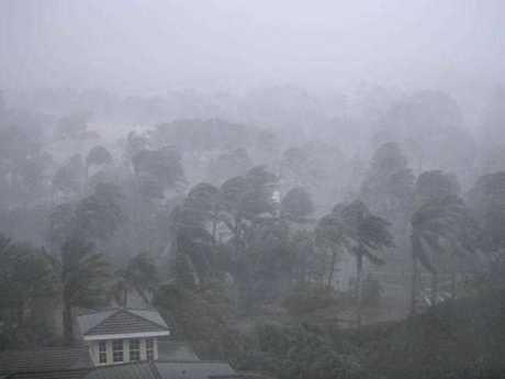 Palm trees blow in the wind as Hurricane Irma passes through Naples, Fla., Sunday, Sept. 10, 2017.