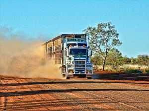 Livestock carriers still trucking