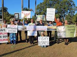 'State must halt logging'